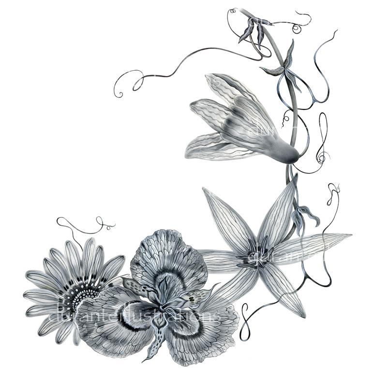 fiori in grigio