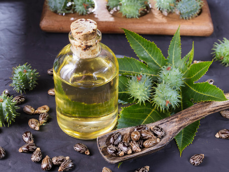 Spotlight on Ingredients : Castor Oil