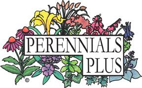 perennialsplus.jpg