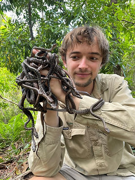 Python babies on hand.jpg