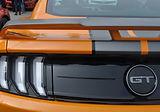 DSC_0491-Mustang.jpg