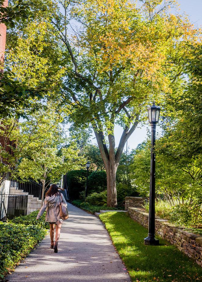 Harvard Radcliffe ND afternoon-9684.jpg