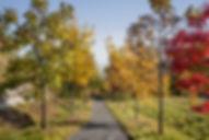 Ferrous Park-1346 web.jpg