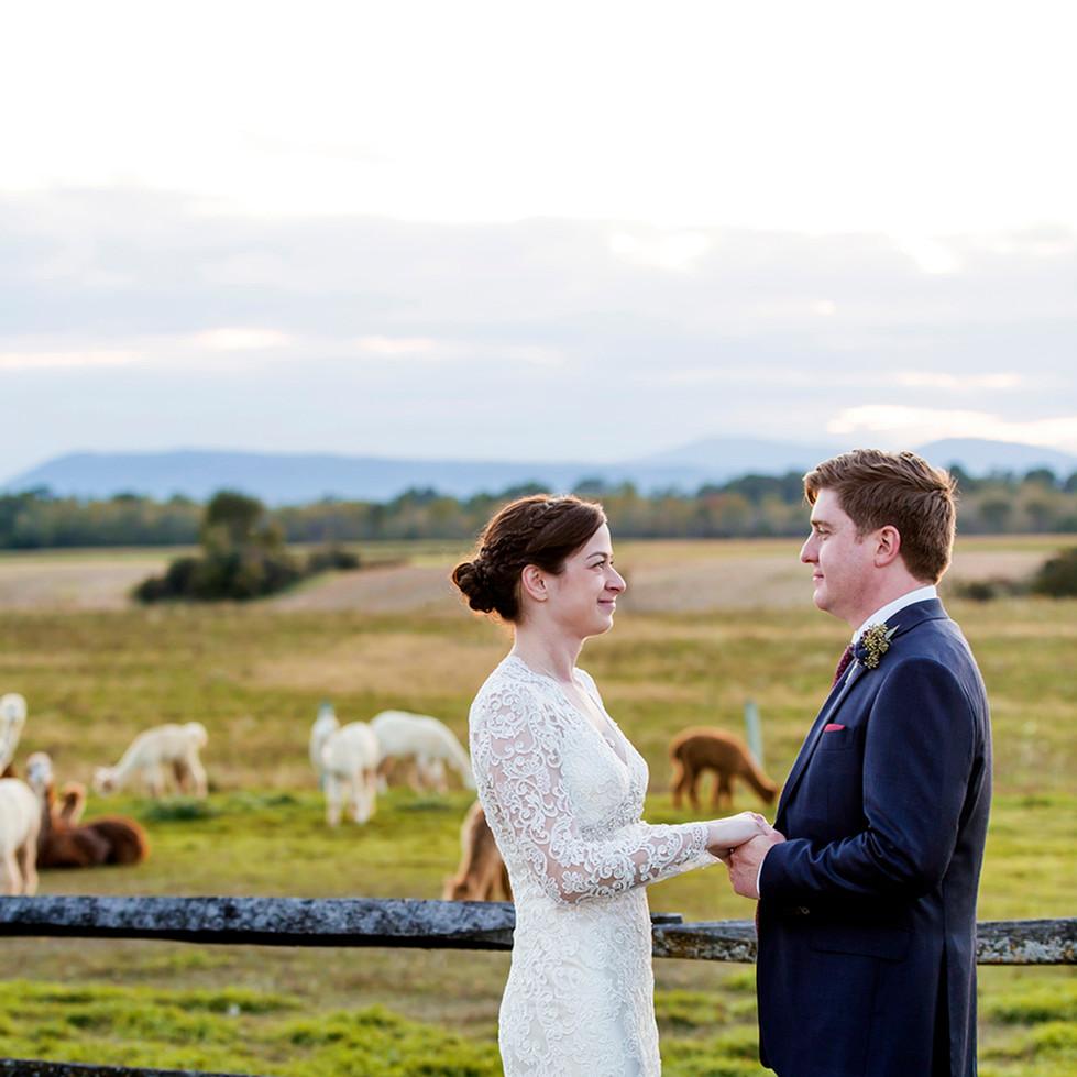 Wedding  BR.jpg