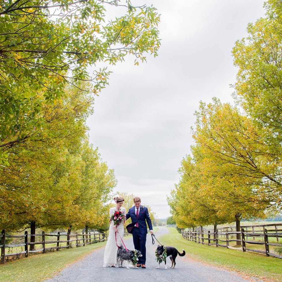 Wedding  BR3.jpg