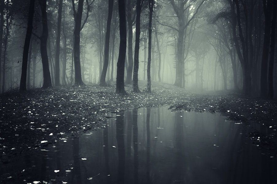 creepy-landscape-wallpaper-phone-For-Wid