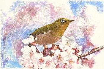 桜2サンプル.jpg