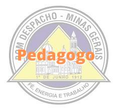 Bom Despacho - MG / Pedagogo