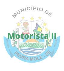 Pedra Mole - SE / Motorista II