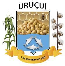 Uruçuí - PI / Cuidador
