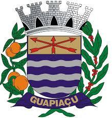 Guapiaçu - SP / Agente de Combate às Endemias