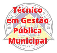 Bom Despacho - MG / Técnico em Gestão Pública Municipal
