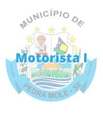 Pedra Mole - SE / Motorista I