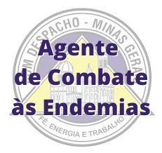 Bom Despacho - MG / Agente de Combate às Endemias