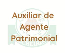 Frecheirinha - CE / Auxiliar de Agente Patrimonial