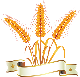 gold-and-silver-wheat-symbol-png-18.png