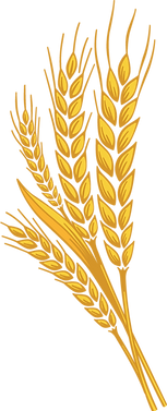 wheat_PNG65.png
