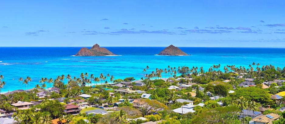 Spotlight on: Kailua