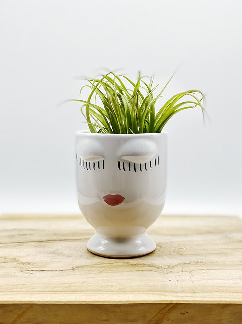 Small Celfie Planter