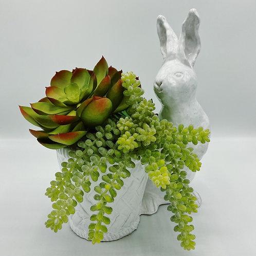 Large Cottontail Rabbit w/ Pot