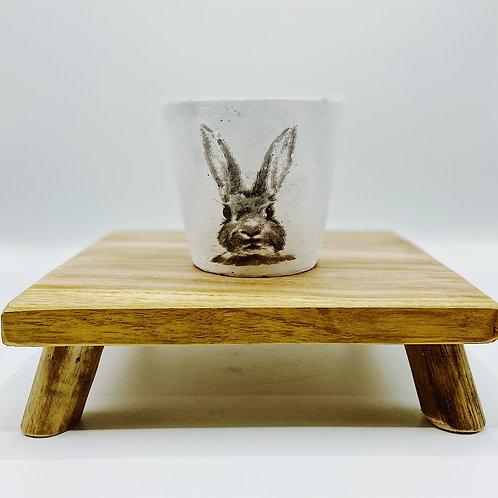 Small Peter Rabbit Pot
