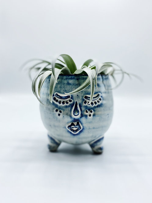 Mrs Clay Pot