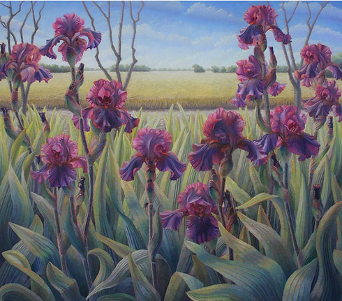 Dark Red Iris with Wheat Field.png