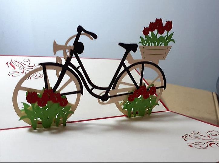 bicileta.JPG