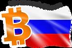 BitcoinRussia24 logo