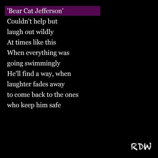bear cat jefferson.jpg