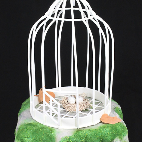 Bird cage on rock cak