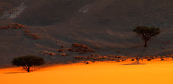 First Light (Namibia, Dune 45)