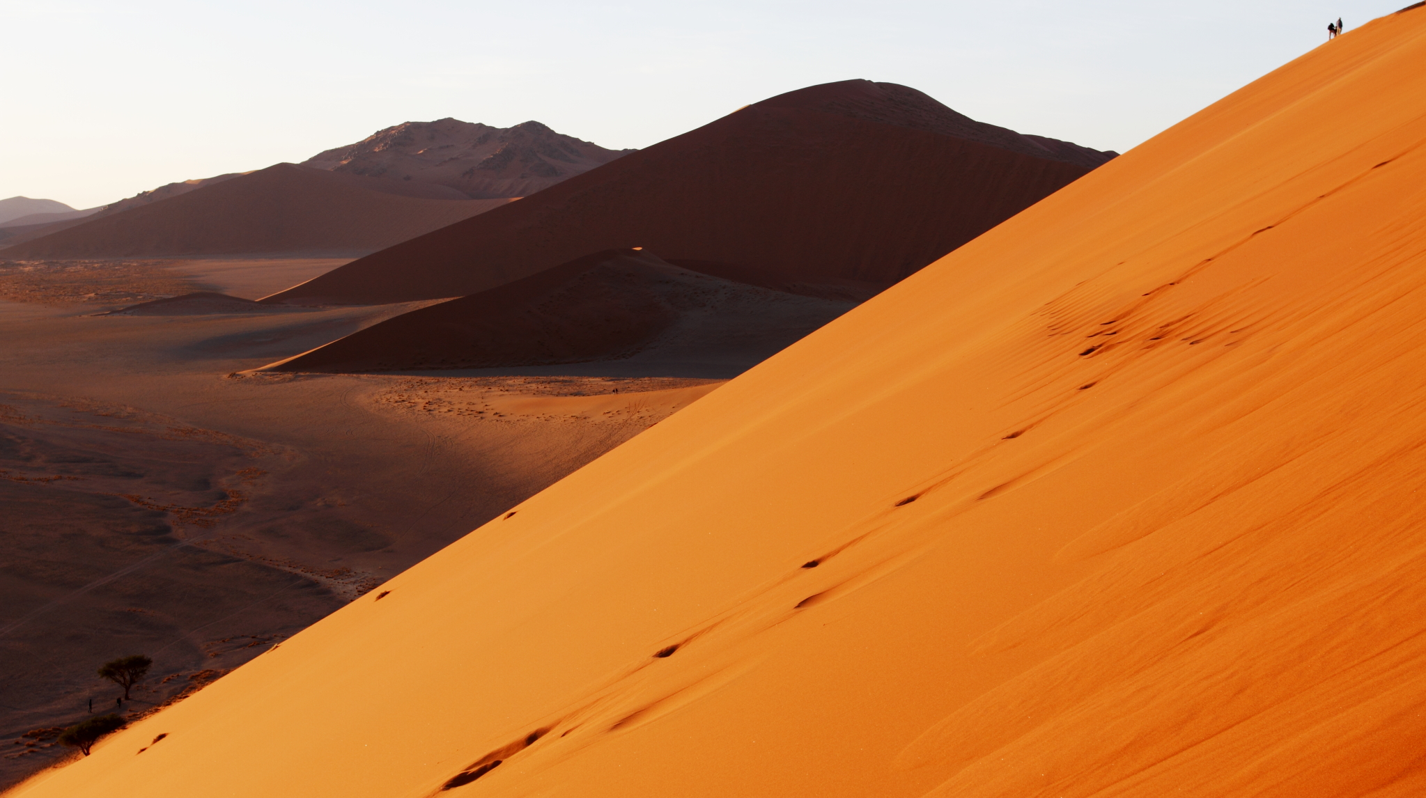 Proportions (Namibia, Dune 45)