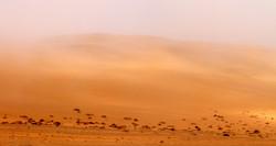 Sand & Mist (Namibia, Swakopmund)