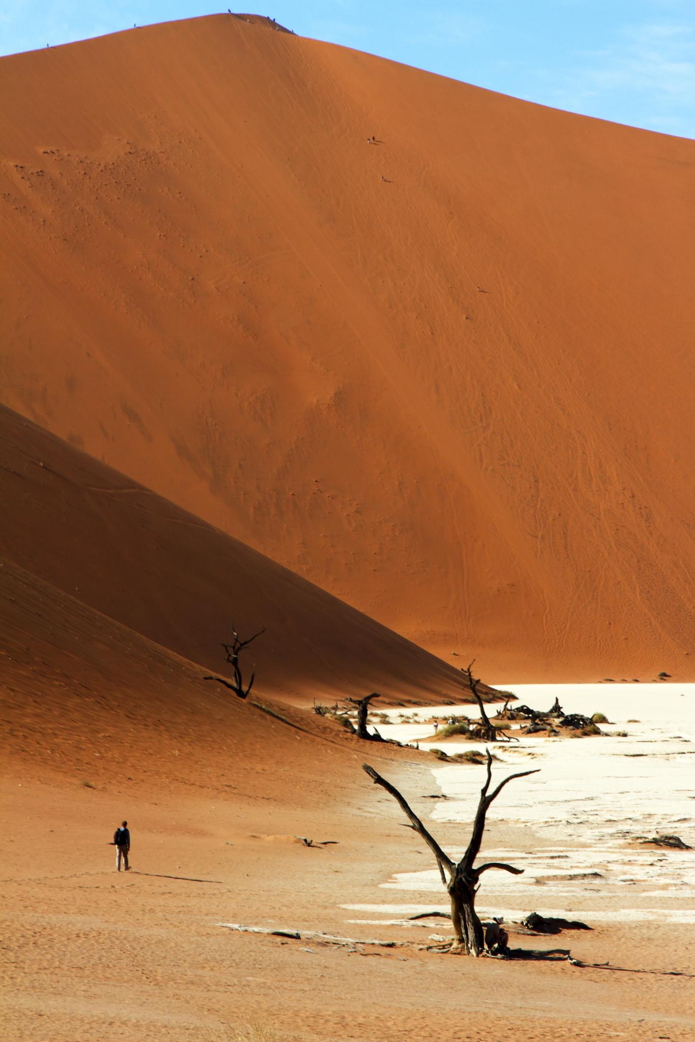 Namibia, Deadvlei