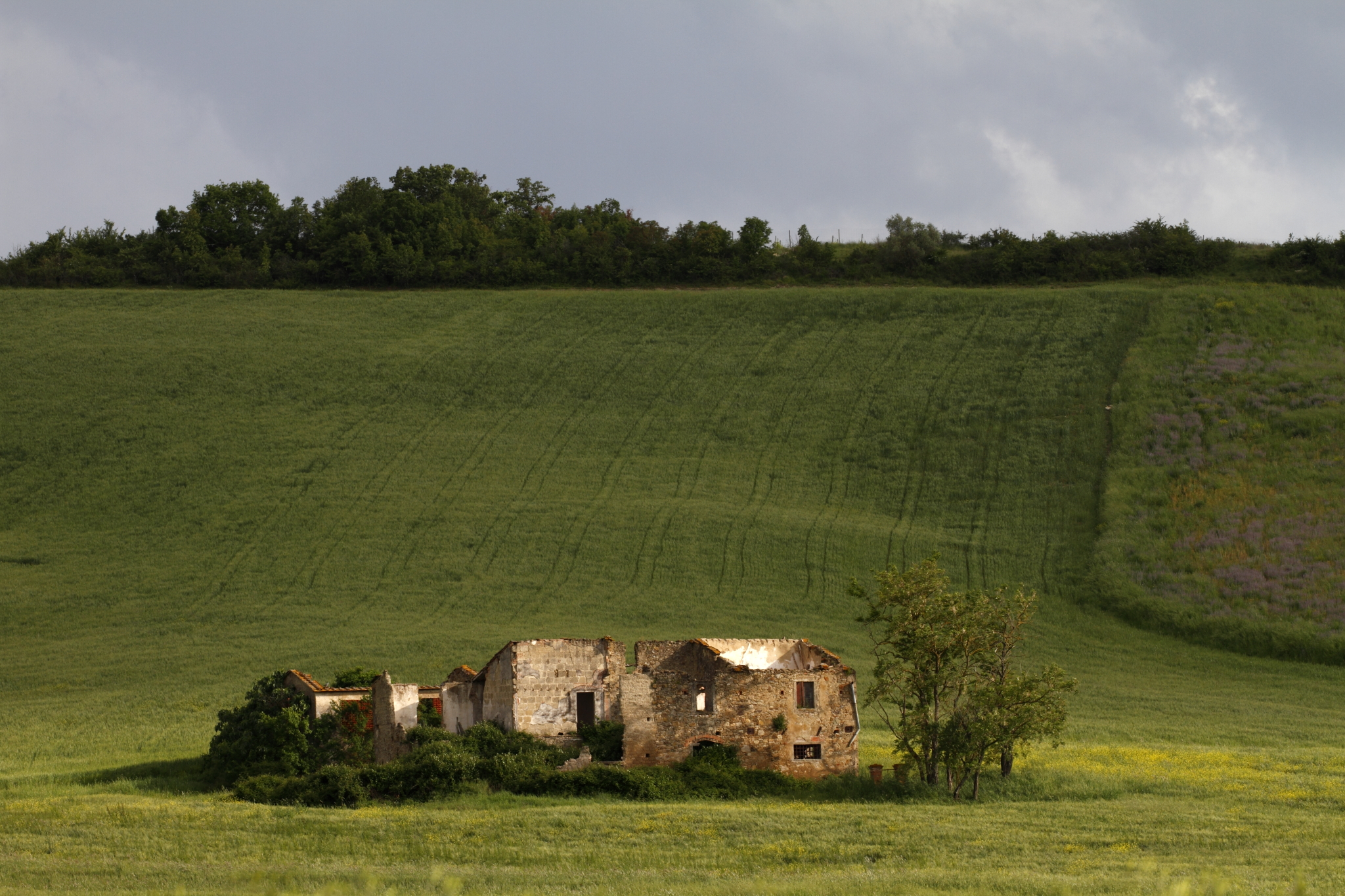 Ruined farm in Chianti