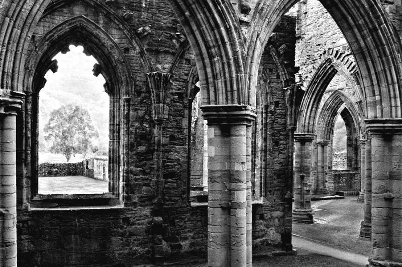 The Window (Tintern Abbey)