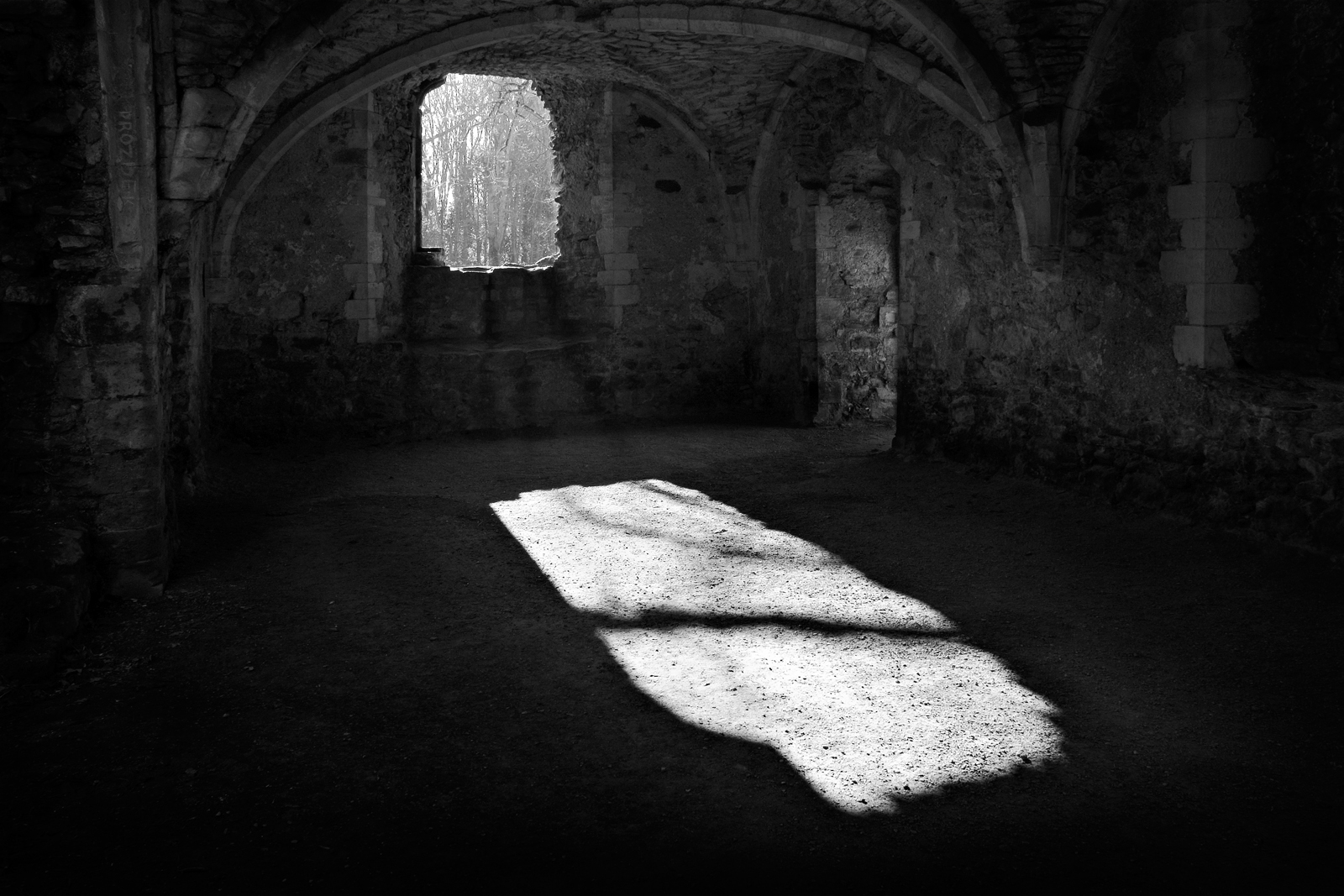 First Light (Netley Abbey)