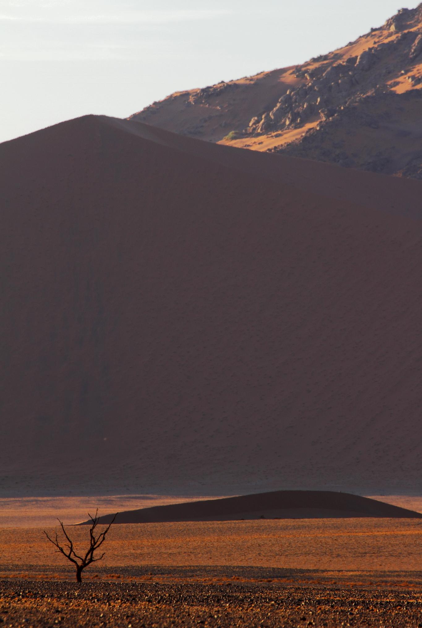 Alone (Namibia, Sossuvlei)