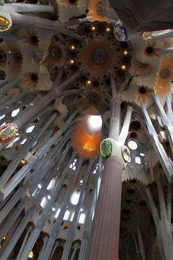 Gaudi Dreaming (Barcelona)