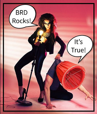 BRD rocks 01 Artboard 1_edited.jpg