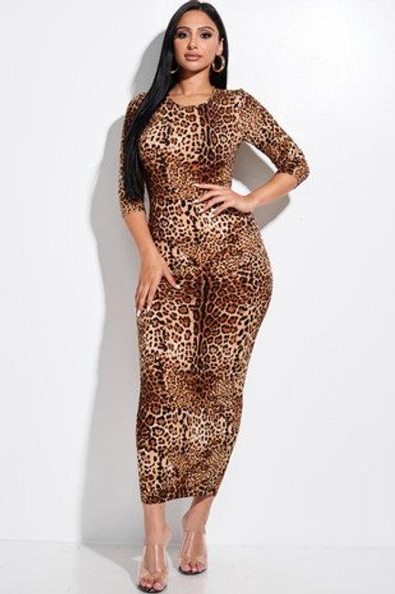 Cheetah Is Always A Good Idea