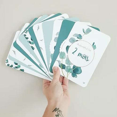 Pack de 26 cartes étapes - Eucalyptus