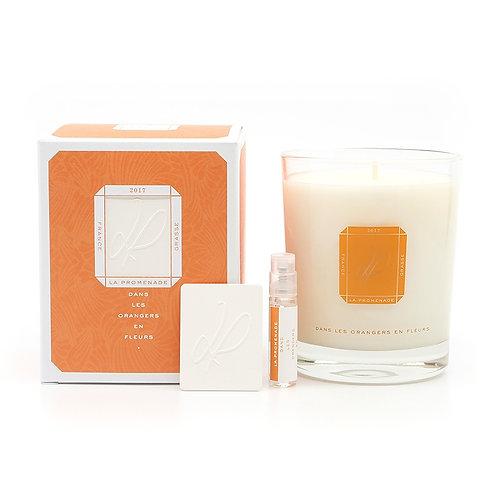 Bougie parfumée sous les orangers (180g)