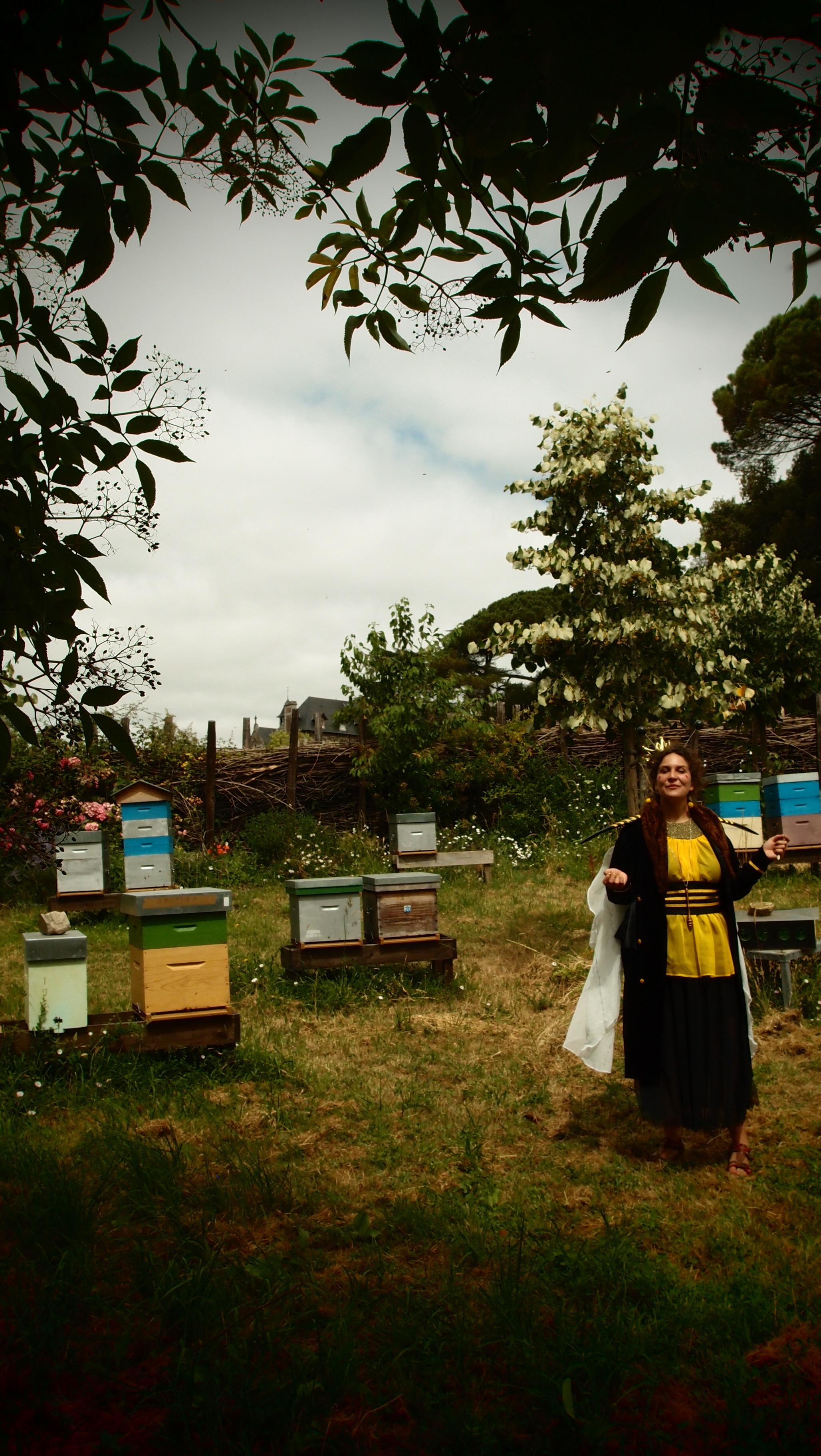 la reine et ses ruches