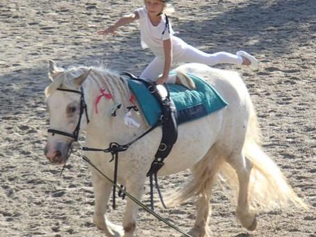 Mit Pferdestärken zu mehr (Selbst)Bewusstsein
