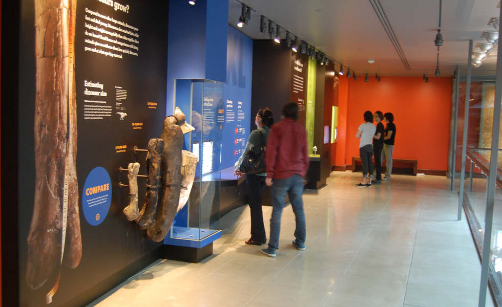 los angeles county museum of natural history featuring the dinosaur hall exhibit graphics and artifacts