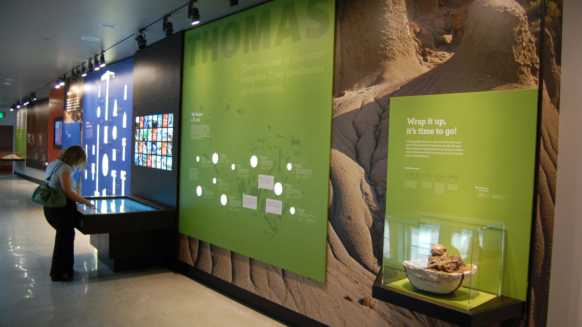 los angeles county museum of natural history featuring the dinosaur hall exhibit graphic wall and interactives
