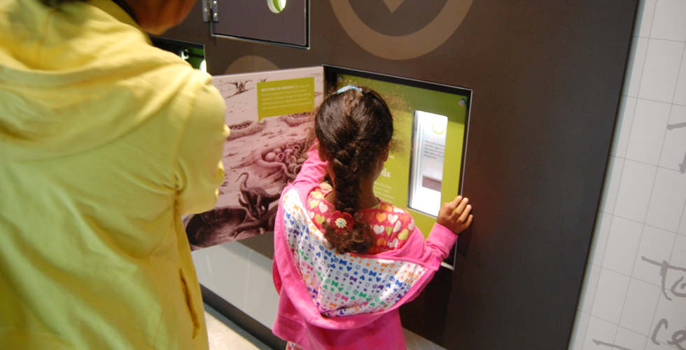 los angeles county museum of natural history featuring the dinosaur hall exhibit interactive in use