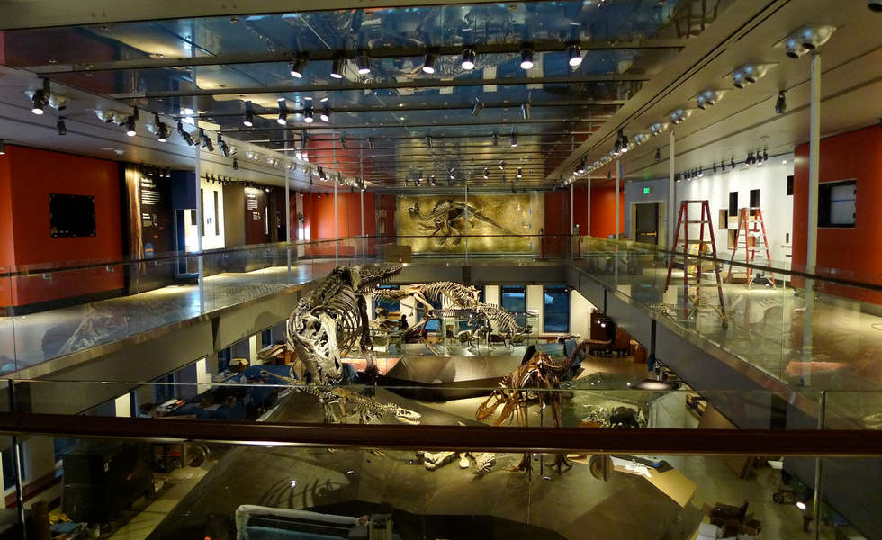 los angeles county museum of natural history featuring the dinosaur hall exhibit